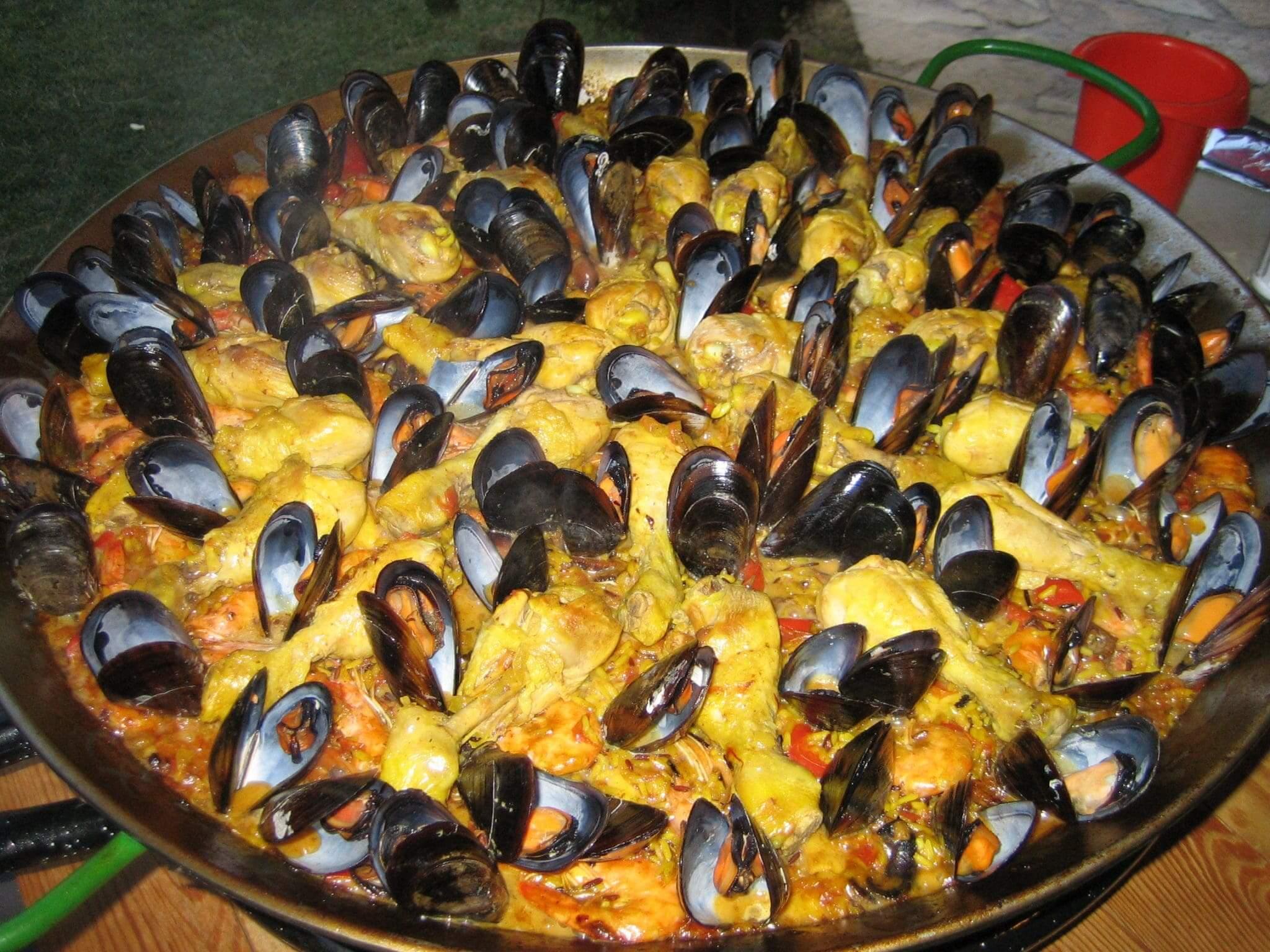 Provence Muscheln